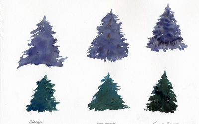 The Easy Way To Paint Fir Trees In Watercolor
