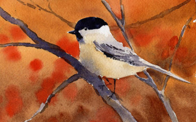 Painting A Black-Capped Chickadee – Watercolor Painting Tutorial