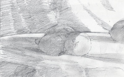 Lemons and Plums Still Life Value Sketch