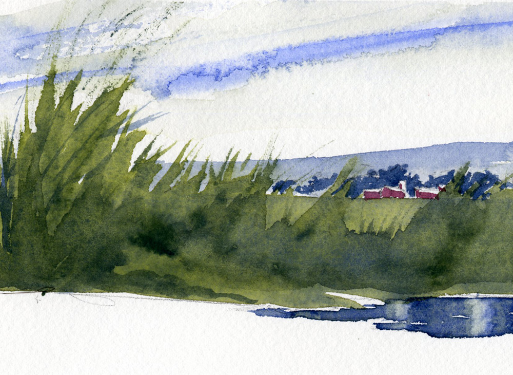 How To Paint Weeds And Tall Grass Watercolor Painting