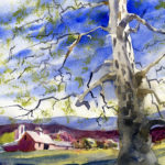 watercolor painting of a sycamore tree and landscape
