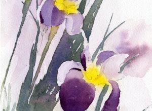 watercolor vignette painting of irises