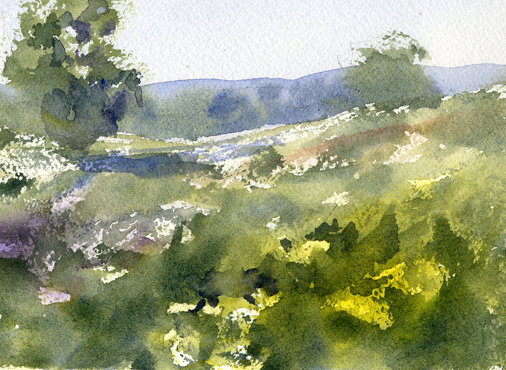 Flowers In A Field Watercolor Painting Lesson